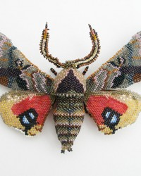 Sphinx Moth Brooch.  Glass seed beads, wood, wire, nylon thread, sterling silver pin back.