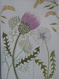 Thistle, Goldenrod, Dandelion
